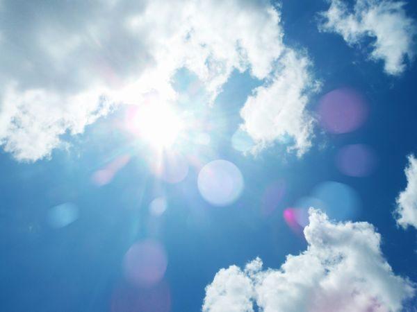 熱中症を起こしそうな夏の天気